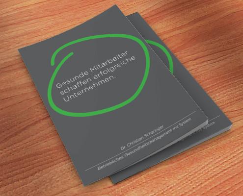 Folder-Betriebliches-Gesundheitsmanagement2